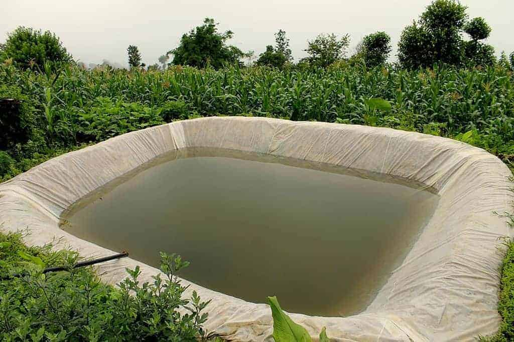 Rainwater_Harvesting_and_Plastic_Pond