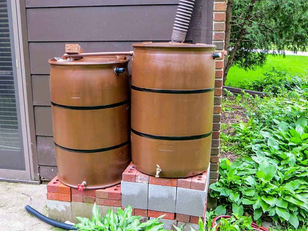 brown rain barrels