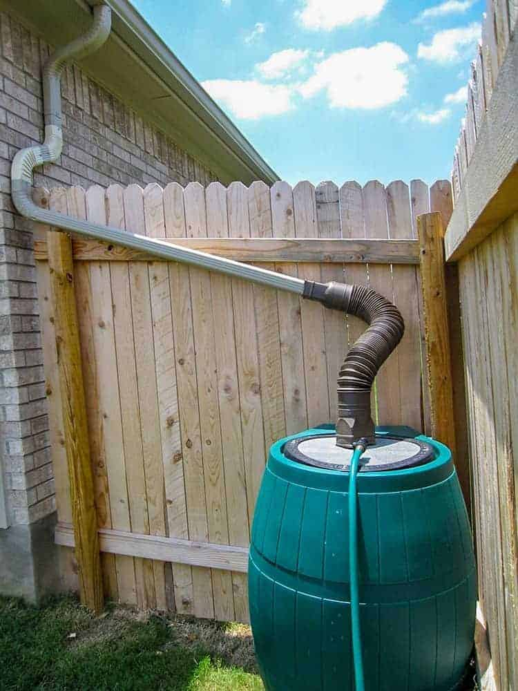 rain barrel and down spout