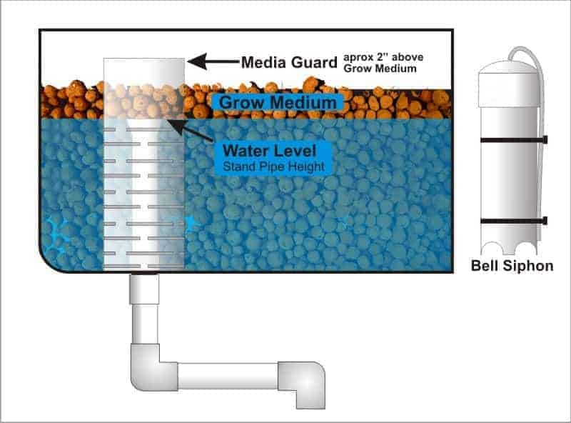 Why You Should Use A Bell Siphon For Aquaponics World Water Reserve