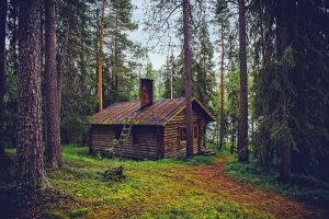 log cabin / 12019 / pixabay