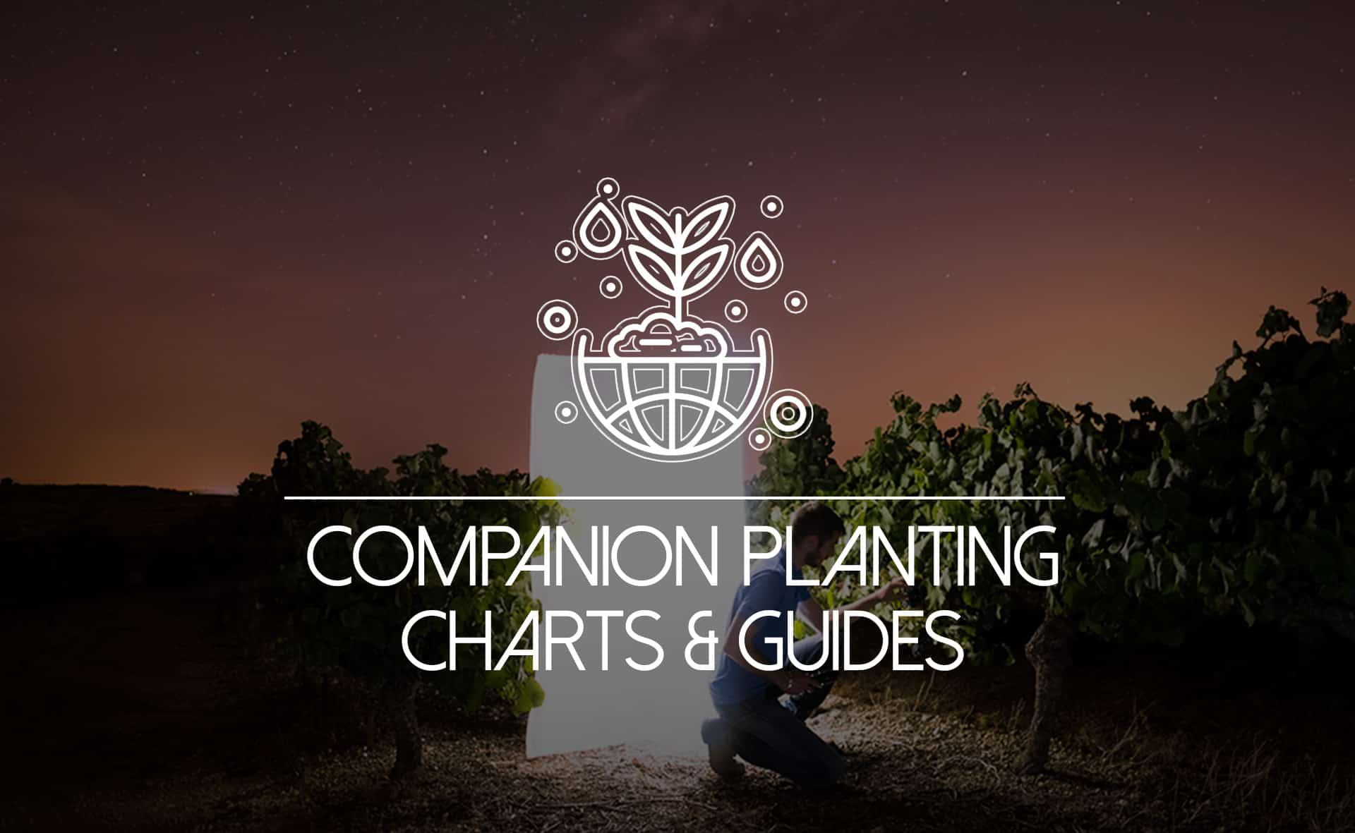"""Featured image for """"Collection of Companion Planting Charts, Guides, and PDFs"""""""