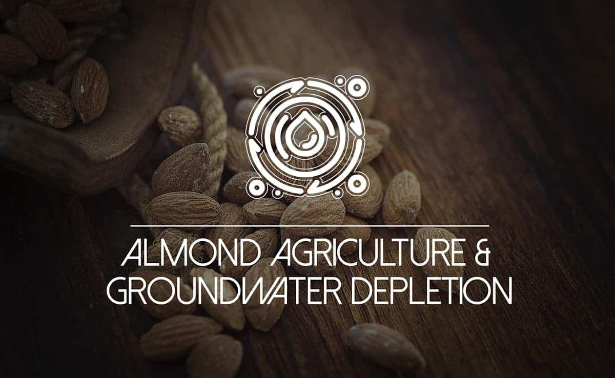 """Featured image for """"Almond Agriculture: Why California is Depleting Its Groundwater Sources"""""""