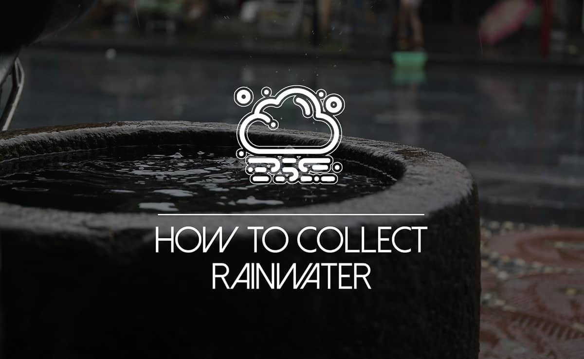 """Featured image for """"How to Collect Rainwater: The Homesteader's Future-Proof Way"""""""