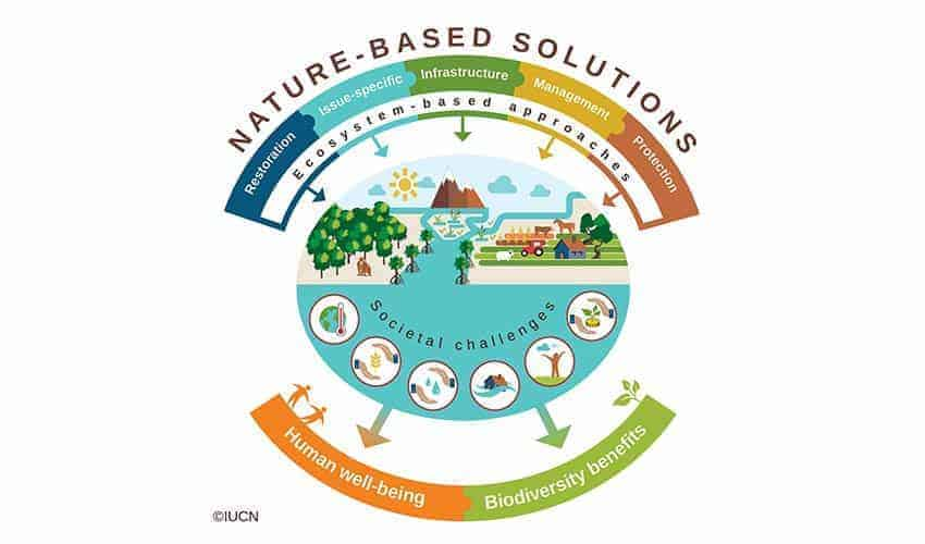 Nature-based Solutions by IUCN